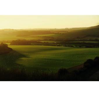 Whitchurch - Mitt England & Wales