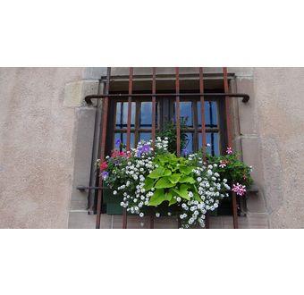 Hesse - Alsace & Saarland