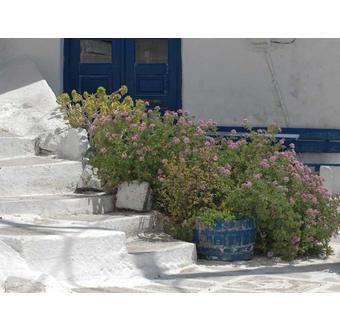 Tilos Øy - Hellas