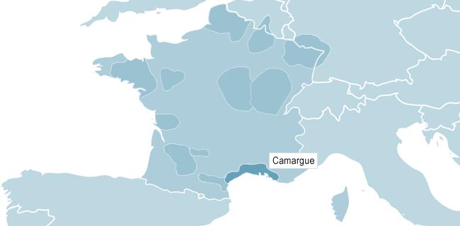 Kart over Camargue
